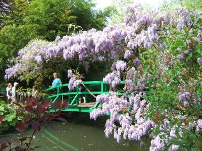 The famous bridge in Monet's garden